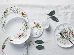 Fleurs sauvages - Rosenthal